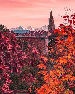 Herbstliches by _bernstagram_fotograf/in: @photoroads