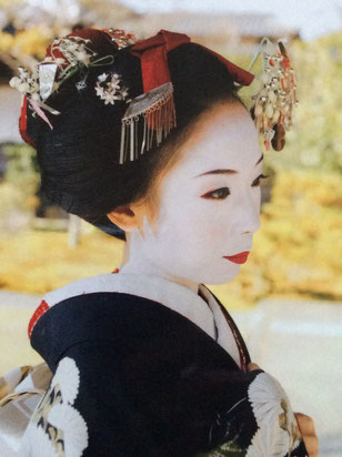 舞子,舞妓,Maiko