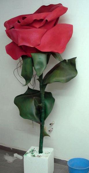 Rosa Gigante, 180 cm altura