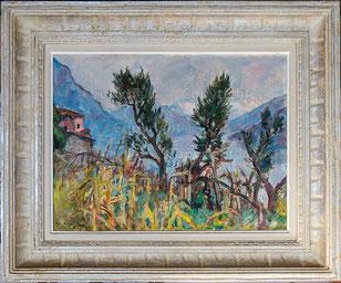 Nr.2244  Tessiner Landschaft