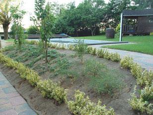 Recouvrement de talus - Entreprise de Parcs et Jardins Laurent Toussaint