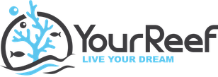 Logo YourReef Live Your Dream
