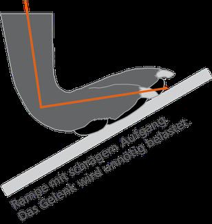 Auf einer Hunderampe wird das Gelenk unnötig belastet (Grafik)
