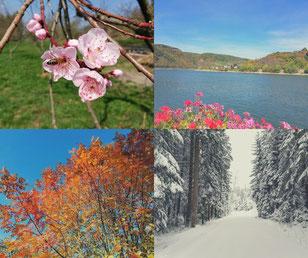 Die Jahreszeiten und das Leben, Leben mit den Jahreszeiten, Kraftquelle, Kreislauf des Lebens