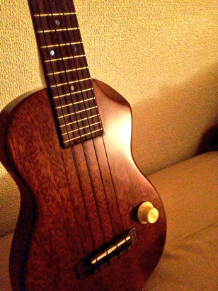 T's EC-100(Solid ukulele)