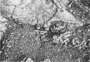 ヘアークラックの写真
