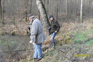 Das Wanderziel der Exkursionsteilnehmer: kleine fischfreie Teiche im Wermsdorfer Forst. Foto: Olaf Schmidt