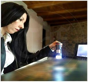 Perito ed Esperta d'Arte_Dott.ssa Tamara Follesa_Autenticazioni&Attribuzioni_Expertise & Consulenze_Stime&Valutazioni_Perizie & Inventari_CriticaD'Arte_CuratelaArtisti_
