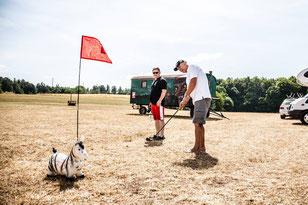 Das Zebra kommt immer ins Spiel!  - © Steffen Müller-Klenk