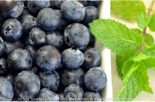Blaubeer-Mojito ohne Zucker