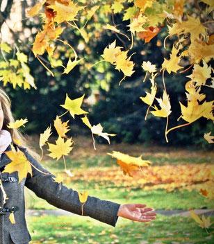 Goldener Herbst, Copyright: Ilona M. Schütt, www.basenfasten-hamburg.net