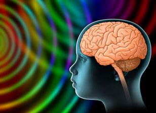 Auswirkungen vorn Elektrosmog auf das kindliche Gehirn
