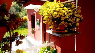 Terraza de Apartamento Huerta