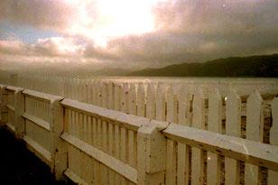 stimmungsvoller Spätnachmittag vor Wellington