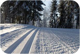 Skilanglauf Loipe Harz
