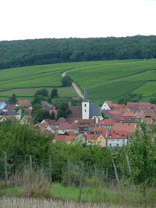 Obereisenheim mit Weinlage Höll