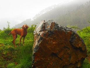 für Lara war der warme Regen ungewohnt, aber angenehm