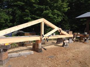 Log  structure trus