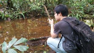 Small stream draining Nee Soon Swamp