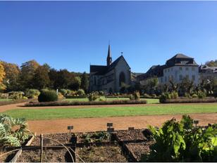 Kloster Marinestatt, www.upanddown-touren.de