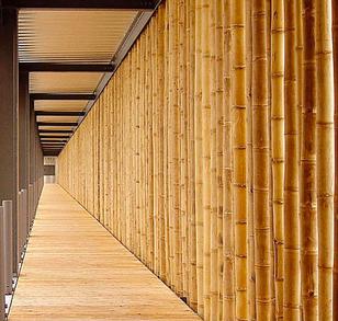 Venta De Bambu En Mexico Todo De Bambu - Bambu-seco