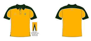 Image of proposed club shirt