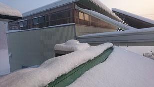 スカイライトチューブ ドーム部雪で隠れる