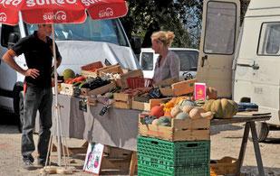 """les """"Jajas"""" de Sillans : légumes bio"""