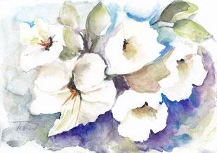 Kelchblüten