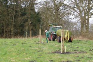 Bewässerung der neuen Bäume  -  Foto:  M. Schirrmacher.