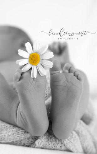 Newbornshooting, Fotoshootings, beachtenswert fotografie, Nordfriesland, Kinderfotografin, Kinderfotograf, Babyfotos, Füße, Babyfüße, Neugebornenfotos, Wittbek