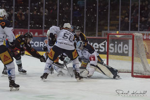 SCB, Eishockey, Angebot, www.danielkneubuehl.com,  Photographer/Fotograf: Daniel Kneubühl