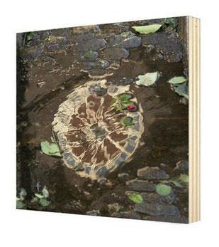 Beispiel Bildtafel 20x20cm, Fotografie, Holz