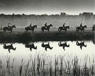 Kavallerieschule Hannover © Hein Gorny