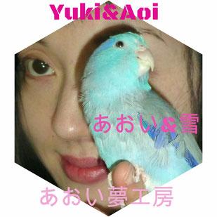 立花雪 YukiTachibana &  Aoi  あおい