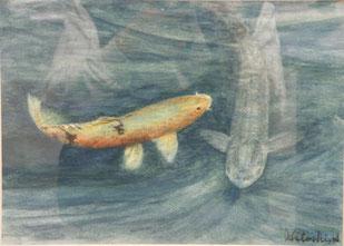 池の鯉 水彩6号
