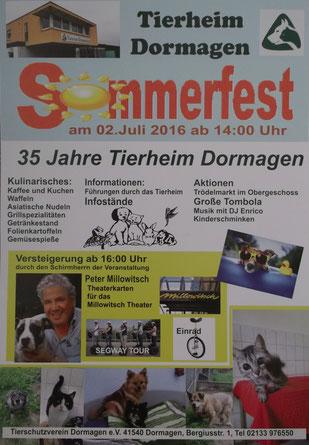 Plakat Sommerfest TH Dormagen