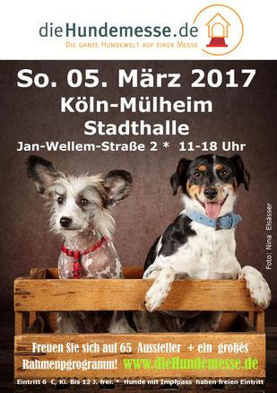 Plakat die Hundemesse 05.03.2017