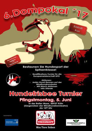 Plakat Dompokal 2017