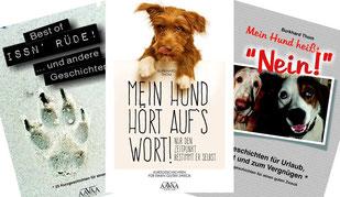 Kurzgeschichten, Foto und Herausgeber: Burkhard Thom
