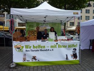Hund ist Hund 16.07.2016, Köln