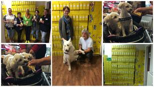 Danke Gimdog, danke Tiervision, Fotos: Quadt und Linke