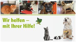 NotFellchen der Tiertafel RheinErft e.v. 12/2016