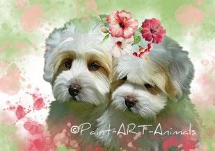 Paint Art Animals