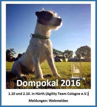Foto: Dompokal