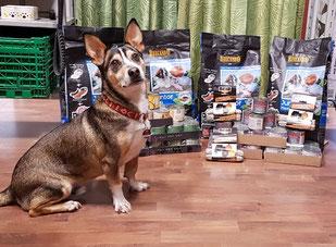 Spike und die PetsNature-Spende 10 2017, Foto: Fabian
