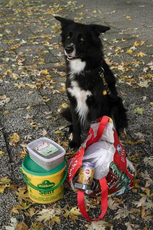 abgefülltes Hunde- und Katzenfutter, Foto: passion-for-photography