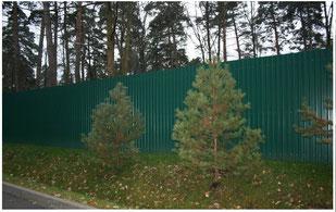 Заборы из профнастила в Видном