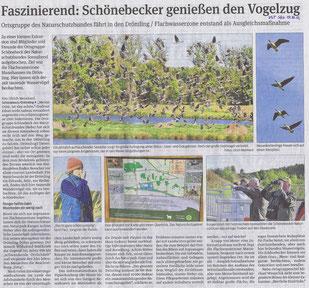 Volksstimme Schönebeck vom 17.Oktober 2012 (Ulrich Meinhard)