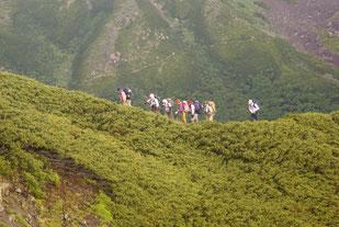 農鳥岳への登り